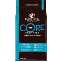 Wellness Core Adult Ocean Salmon & Tuna 10kg